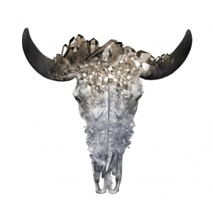 Crystal_Cow_Skull