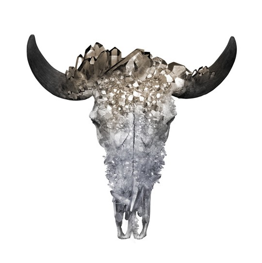 crystal cow skull art print