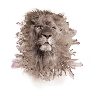 Crystal_Lion